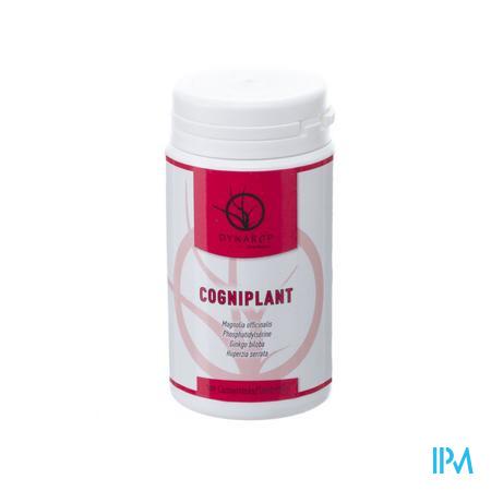Cogniplant Comp 100