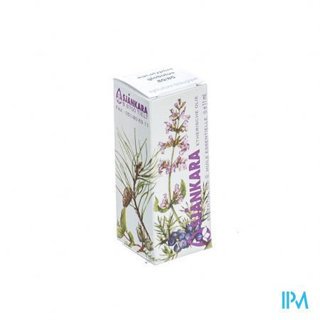Sjankara Eucalyptus Glob Essentiele Olie 11 ml