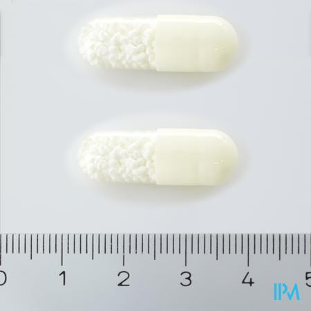 Xanthium 300 Capsule 60 X 300 mg