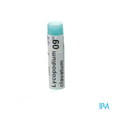 Lycopodium Clavatum 9CH Gl  -  Boiron