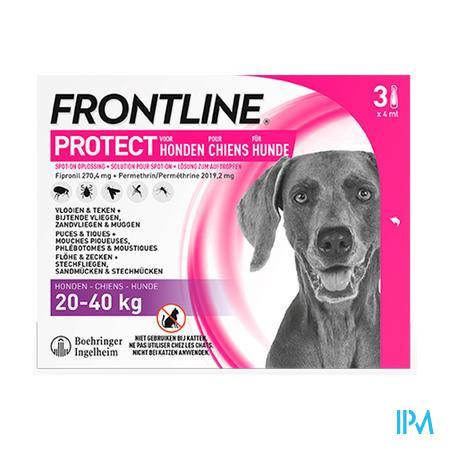 Frontline Protect Spot On Opl Hond 20-40kg Pipet 3