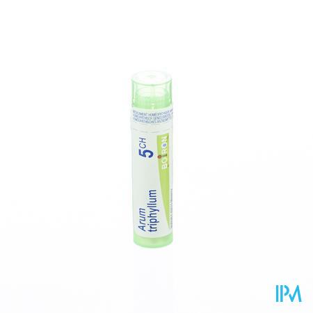 Arum Triphyllum 5ch Gr 4g Boiron