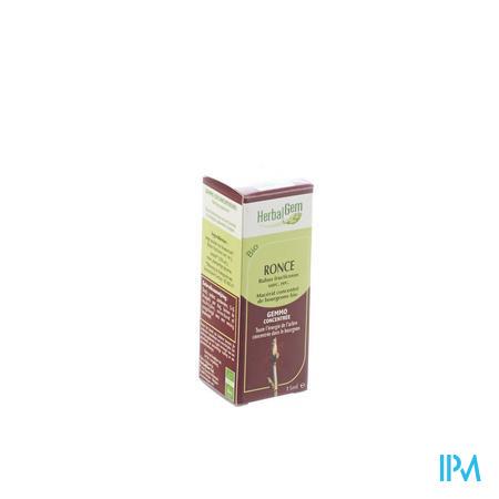 Herbalgem Braamstruik Maceraat 15 ml