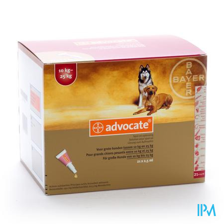 Advocate Spot On Grote Hond >10-25kg Pipet 21