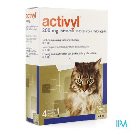 Activyl Spot-on Opl. Grote Katten Pipet 4x200mg
