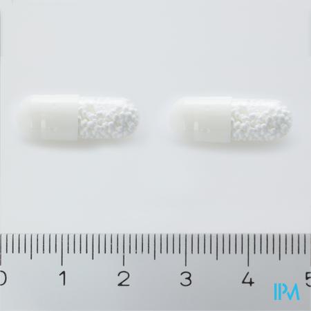 Xanthium 400 Capsule 60 X 400 mg