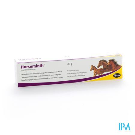 Horseminth Pasta Spuit 1x26g