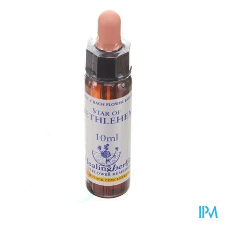 Healing Herbs Star Bethlehem 10 ml