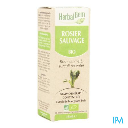 Herbalgem Rosier Sauvage Macerat 15ml