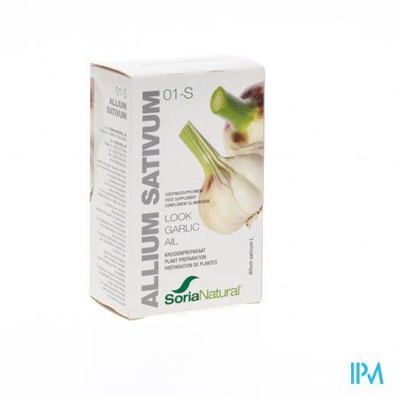 Soria 01s Allium Sativum