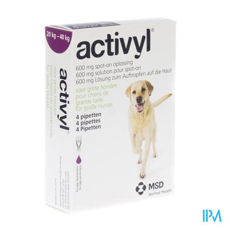 Activyl Spot-on Opl. Grote Hond Pipet 4x600mg