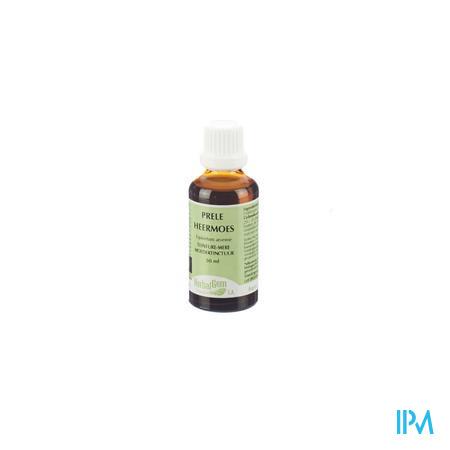 Herbalgem Acker-Schachtelhalm TM 50 ml