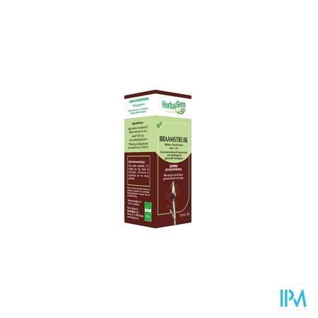 Herbalgem Braamstruik Maceraat 50 ml