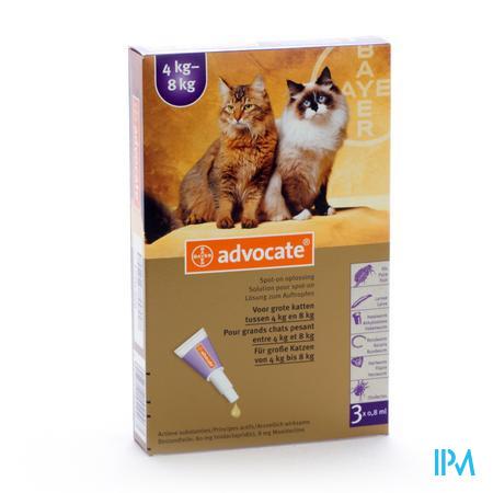 Advocate Spot On Opl Grote Kat >4- 8kg Pipet 3
