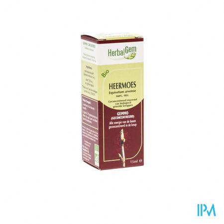 Herbalgem Appelboom Maceraat 15 ml