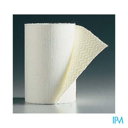 Biplast Bande Contention ADH Blanc 10cm x 2.5m 1 pièce