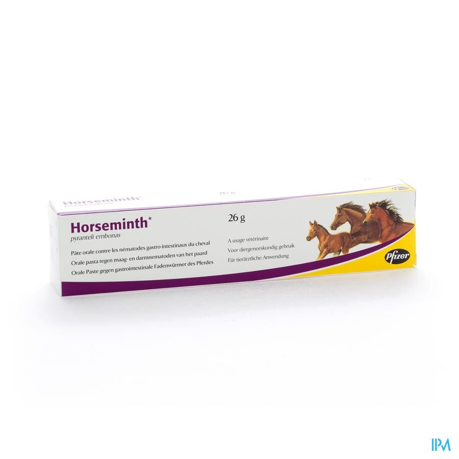 Horseminth Pate Seringue 1x26g