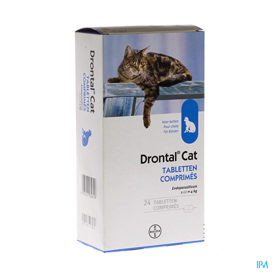 DRONTAL KATTEN CHATS COMP  24