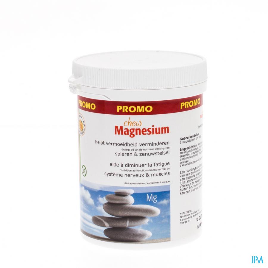 Fytostar Chew Magnesium Maxi Comp A Croquer 120