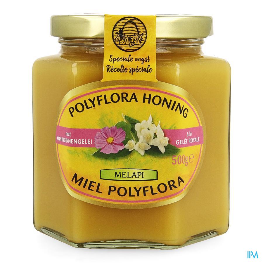 Melapi Polyflora+koninginnebrij 500 gr 5534