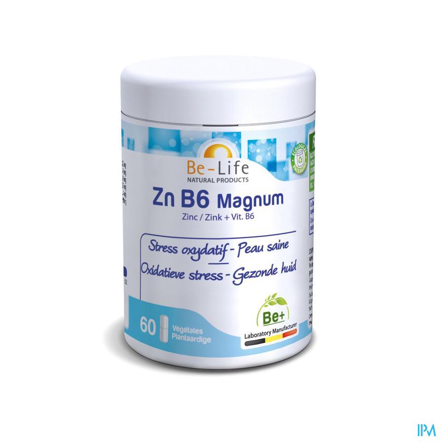 Zn B6 Magnum Minerals Be Life Gel 60
