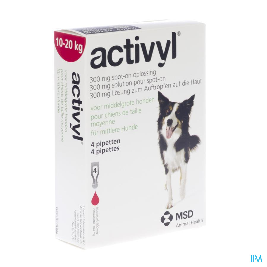 Activyl Spot-on Sol. Chien Moyen Pipet 4x300mg
