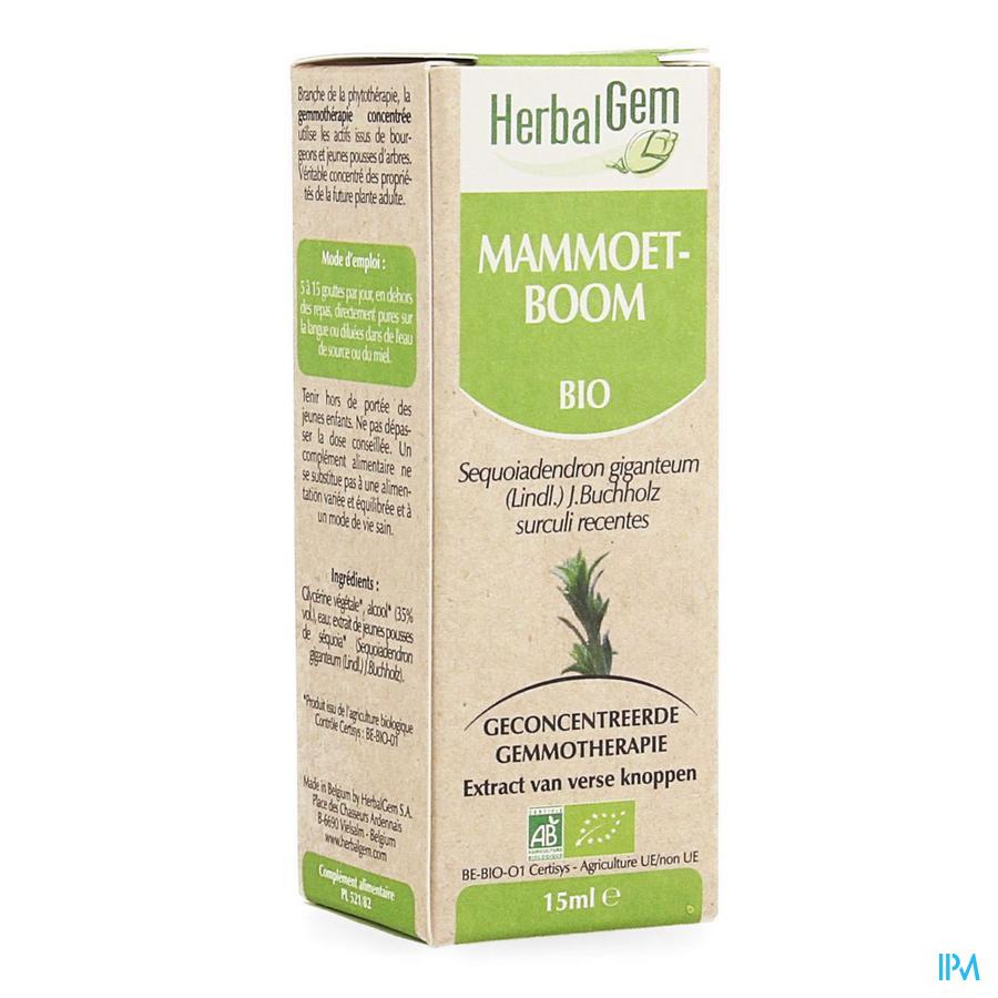 Herbalgem Sequoia Macerat 15ml