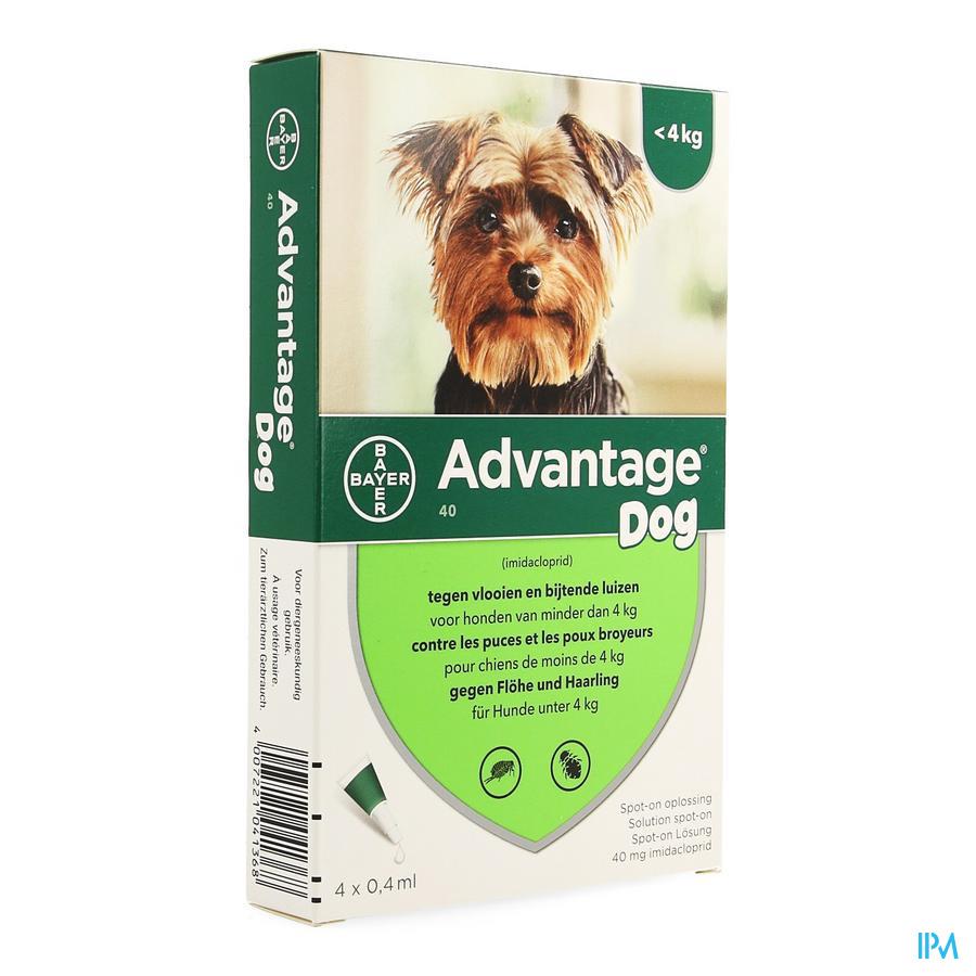 Advantage 40 Honden