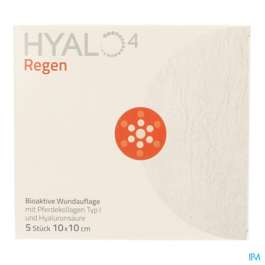 Hyalo 4 Regen Pans Gaze Ster 10 X 10cm 5