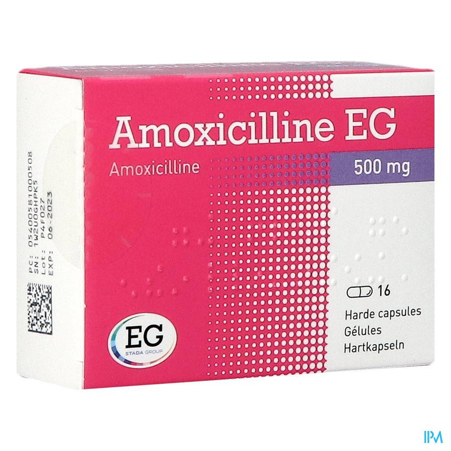 Amoxicilline Eg Caps 16 X 500mg