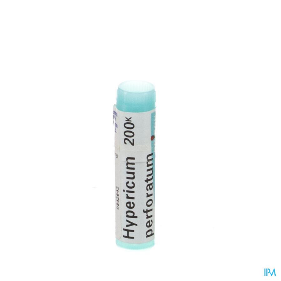 Hypericum Perforatum 200K Gl  -  Boiron