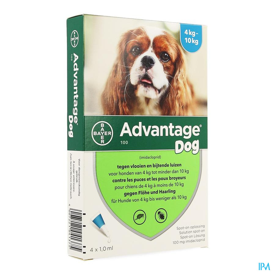 Advantage 100 Honden 4