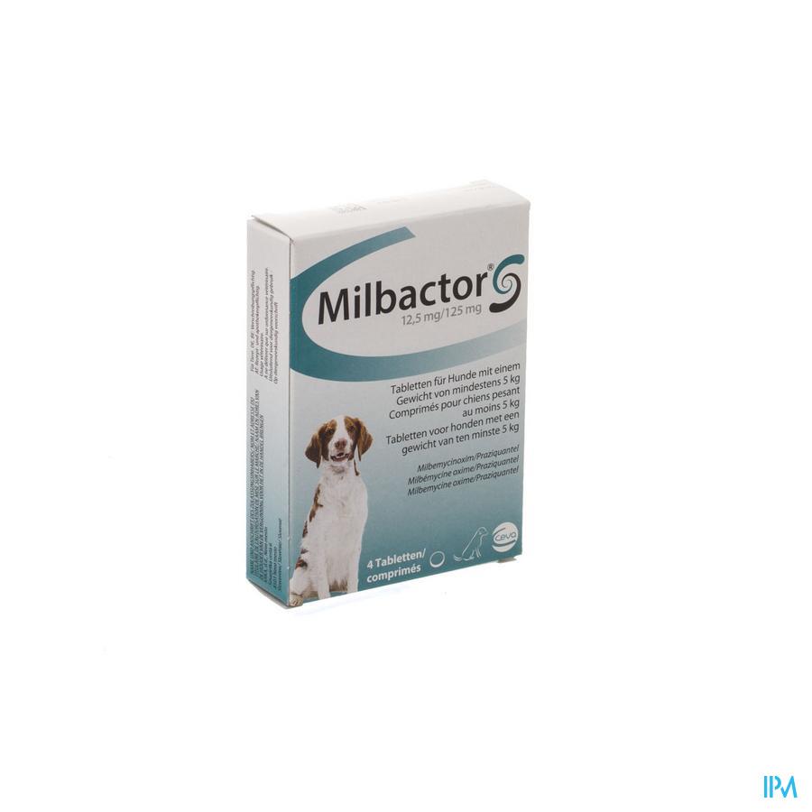 Milbactor Hond Veter 4 Tabl