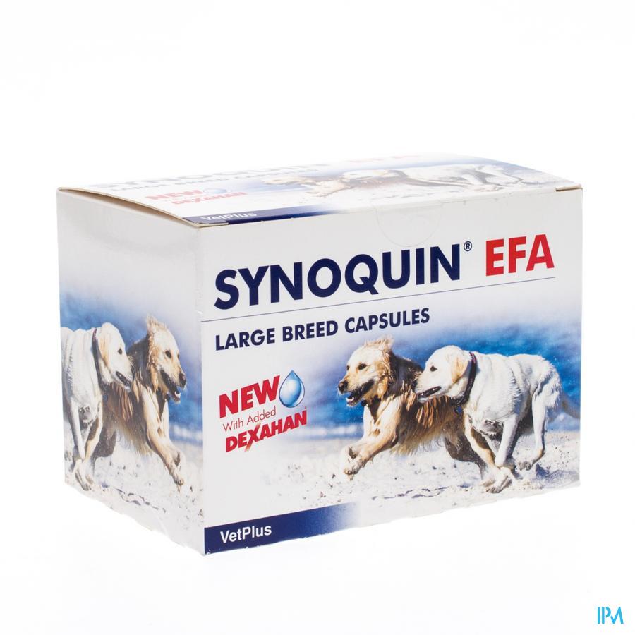 Synoquin Efa Large Breed Caps 4x30